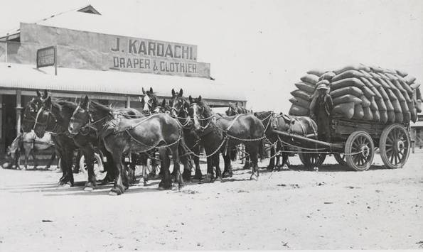 1900: Ten horse wagon team at Tumby Bay