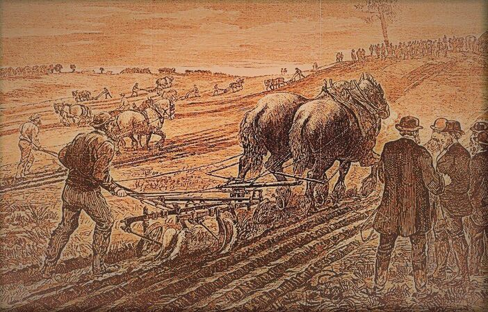 Ploughing Matches Australia 1800's