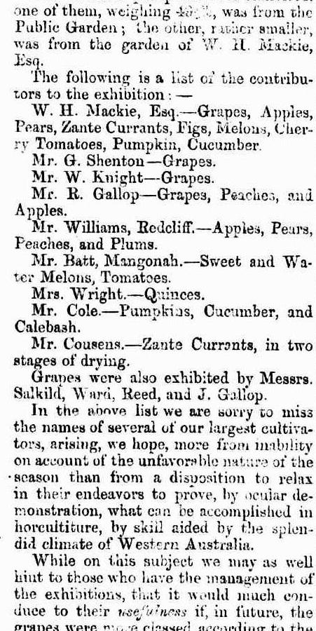 VINEYARD SOCIETY EXHIBITION OF FRUIT W.A. 1848