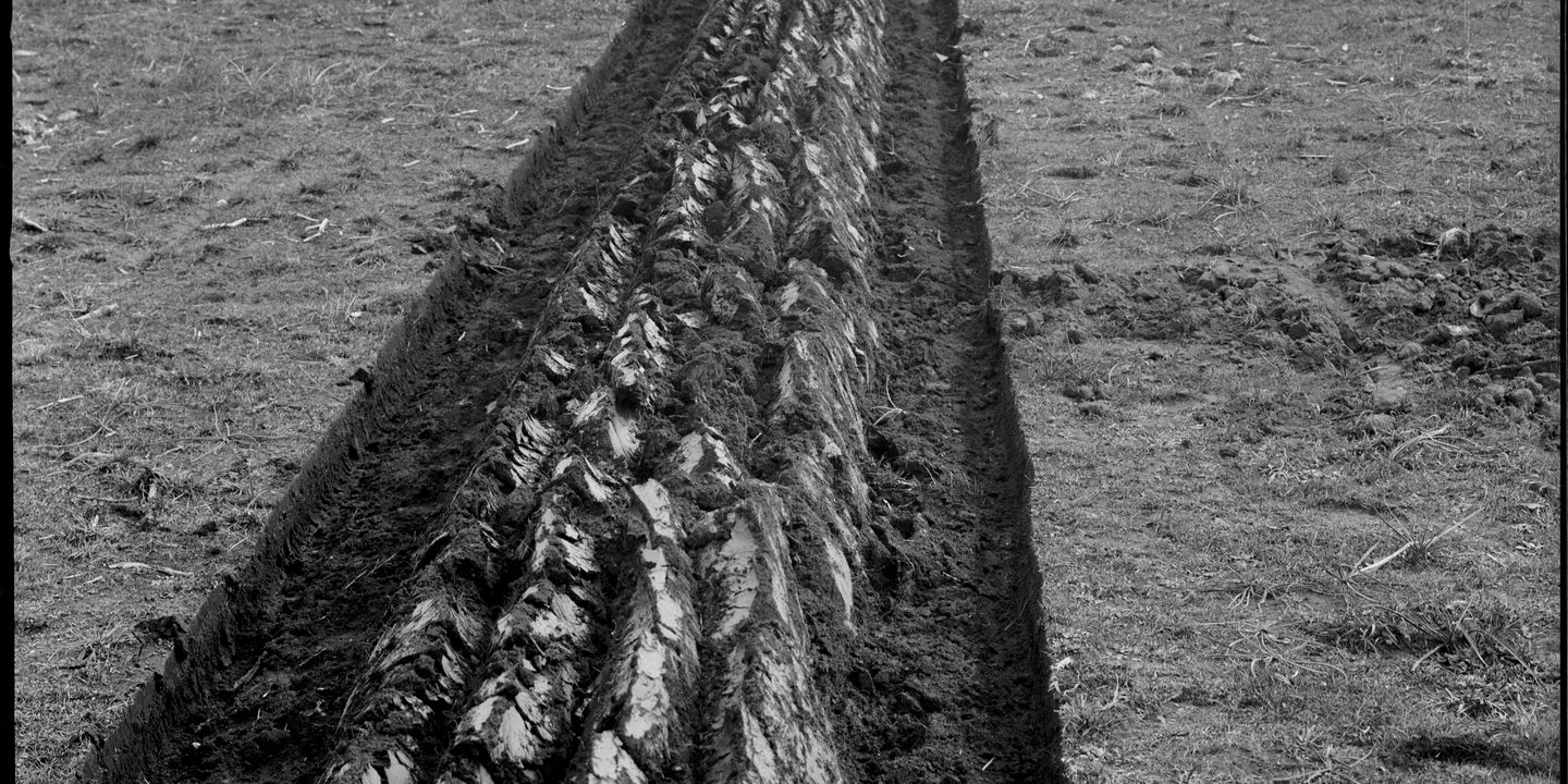 Straight furrows', Kerry and Co, Sydney, Australia