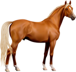 Entire Horse